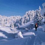 Año nuevo en Chamonix 8